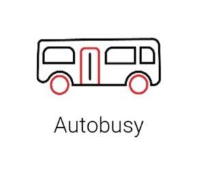 AutoSAP: Přehled o výrobě a odbytu vozidel za období od 1. ledna do 30. června 2019
