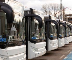 Autobusoví dopravci v pasti