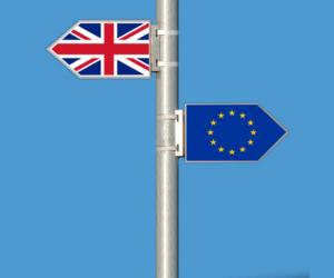 Doprava po brexitu – trh vyčkává